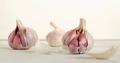 Garlic Presses - How Does It Work?